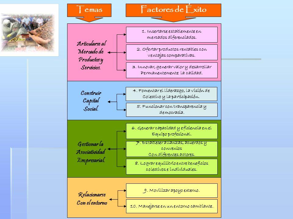 Temas Factores de Éxito
