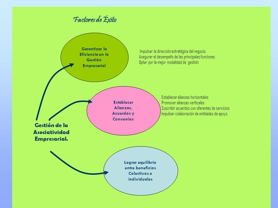 Gestión de la Asociatividad Empresarial.