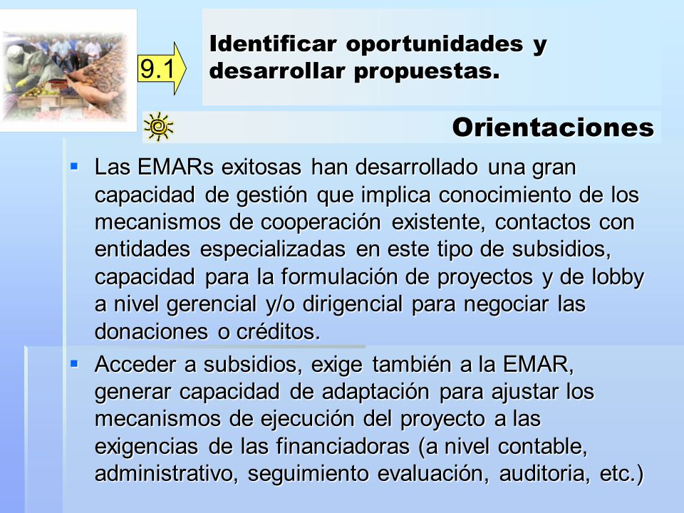 9.1 Orientaciones Identificar oportunidades y desarrollar propuestas.