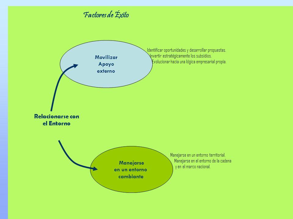 Factores de Éxito Relacionarse con el Entorno Movilizar Apoyo externo