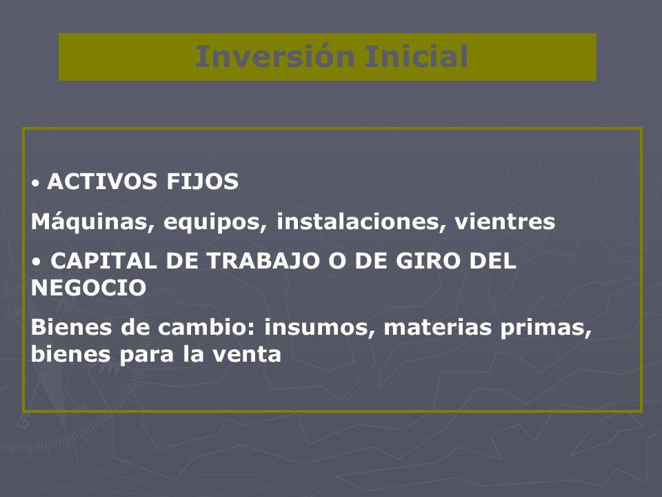 Inversión Inicial Máquinas, equipos, instalaciones, vientres
