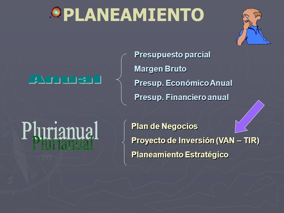 PLANEAMIENTO Anual Plurianual Presupuesto parcial Margen Bruto