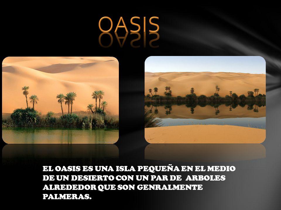 OASIS EL OASIS ES UNA ISLA PEQUEÑA EN EL MEDIO DE UN DESIERTO CON UN PAR DE ARBOLES ALREDEDOR QUE SON GENRALMENTE PALMERAS.