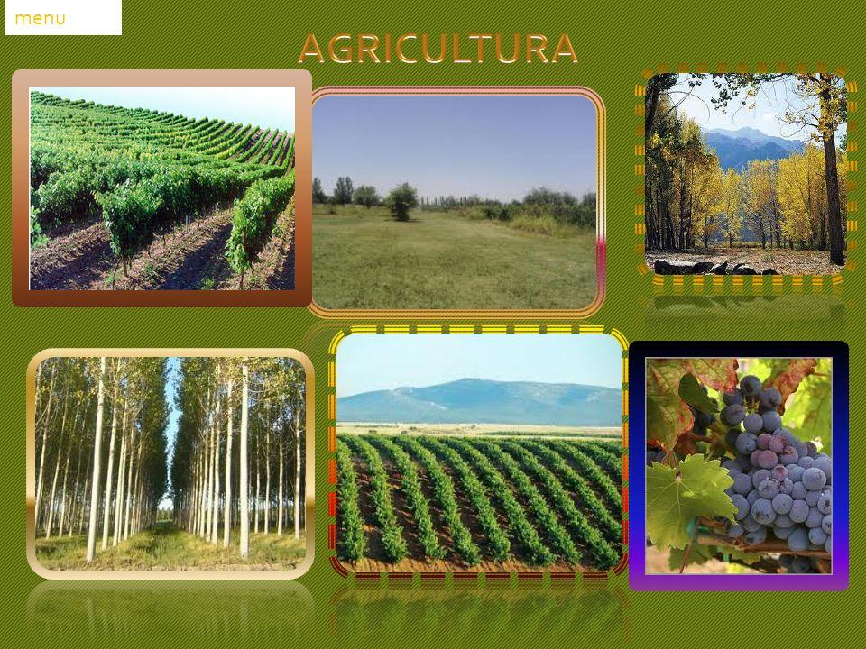 menu AGRICULTURA