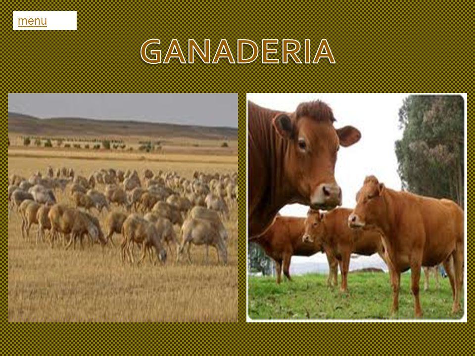 menu GANADERIA