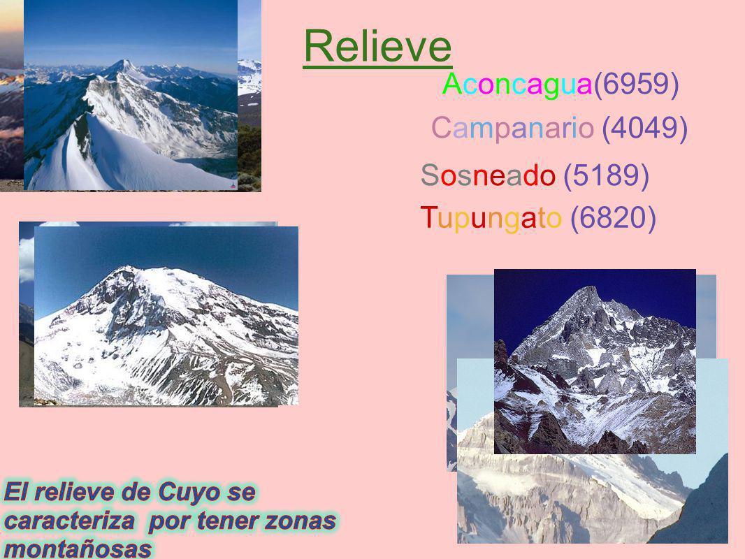 Relieve Aconcagua(6959) Campanario (4049) Sosneado (5189)