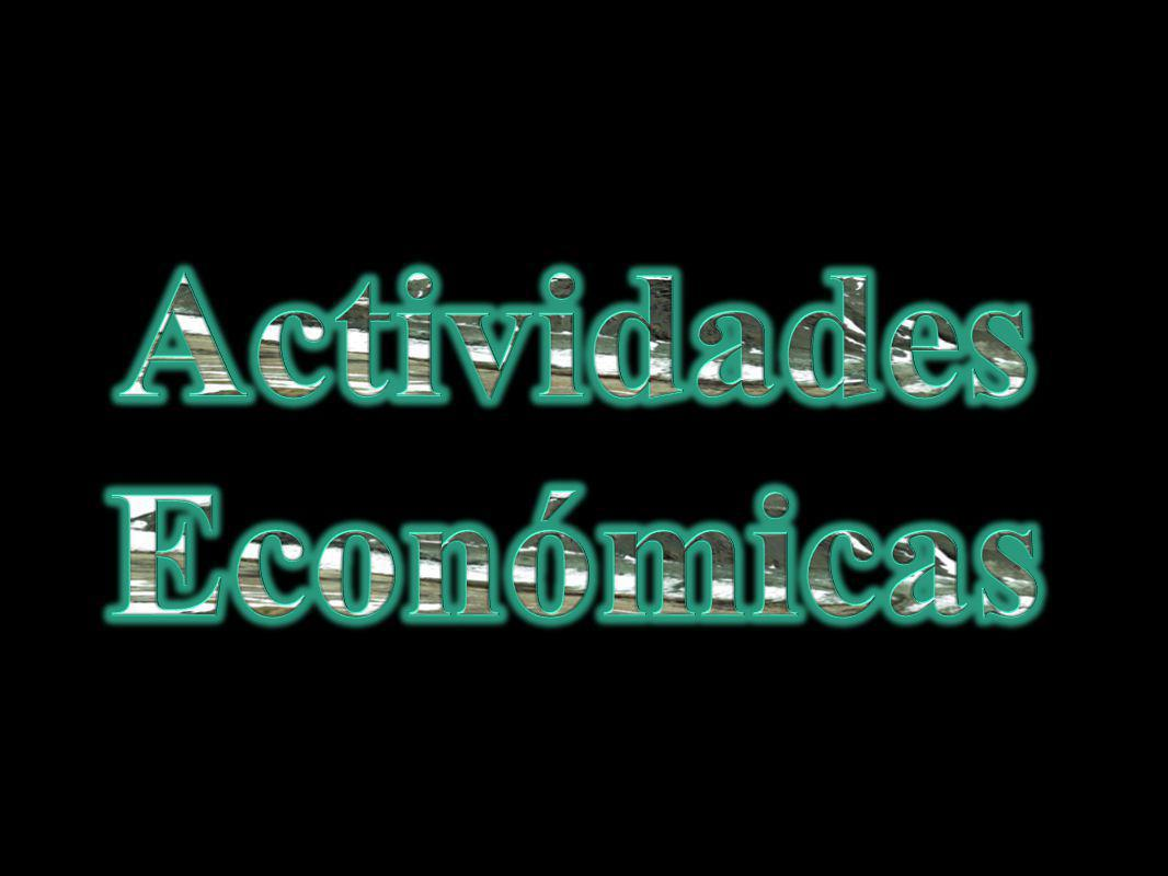 Actividades Económicas