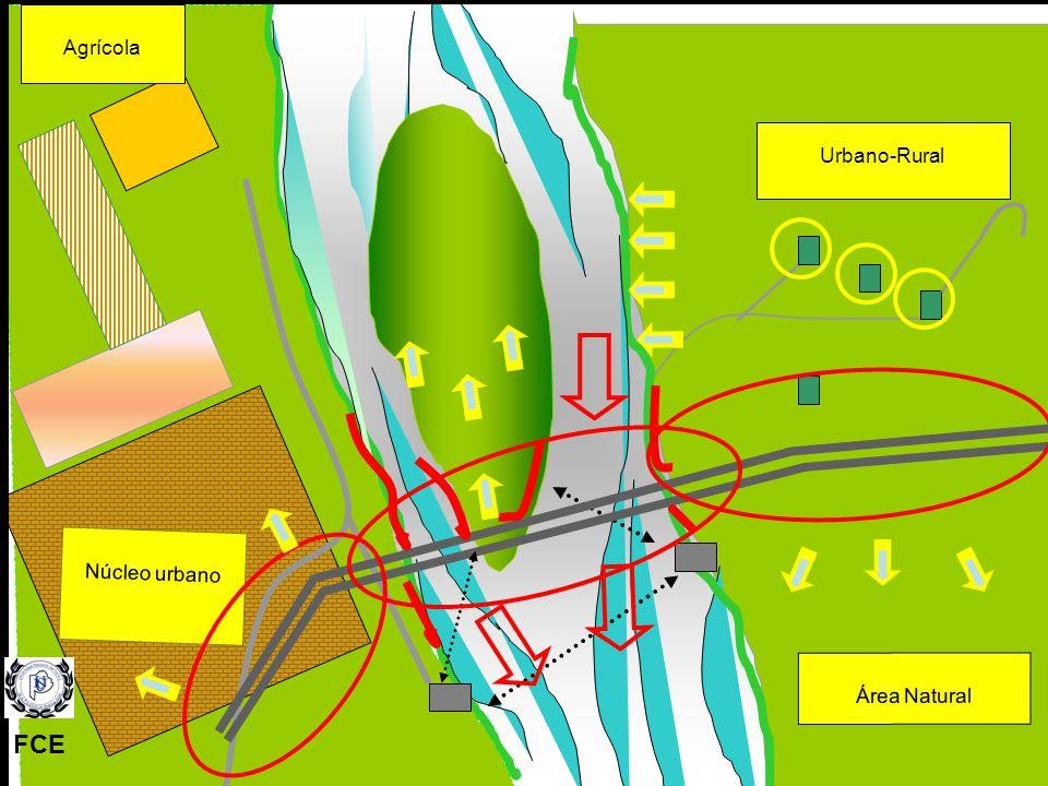 Agrícola Área Natural Núcleo urbano Urbano-Rural FCE