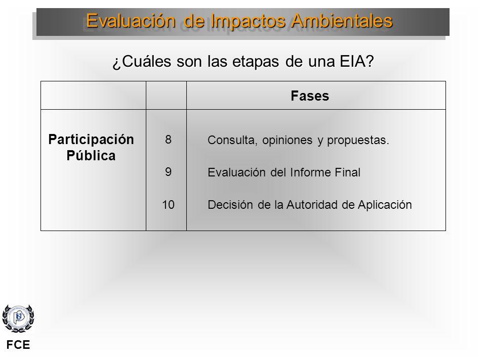 Participación Pública