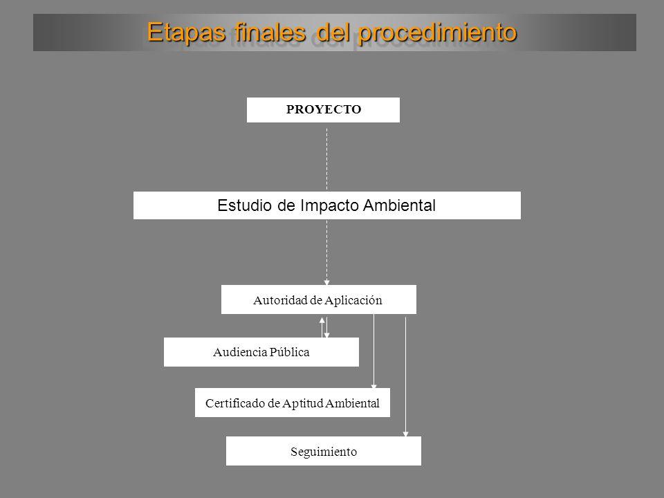Etapas finales del procedimiento