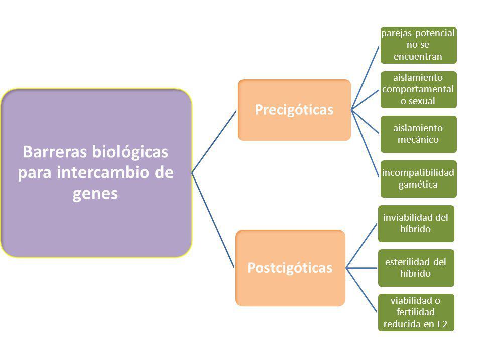 Barreras biológicas para intercambio de genes