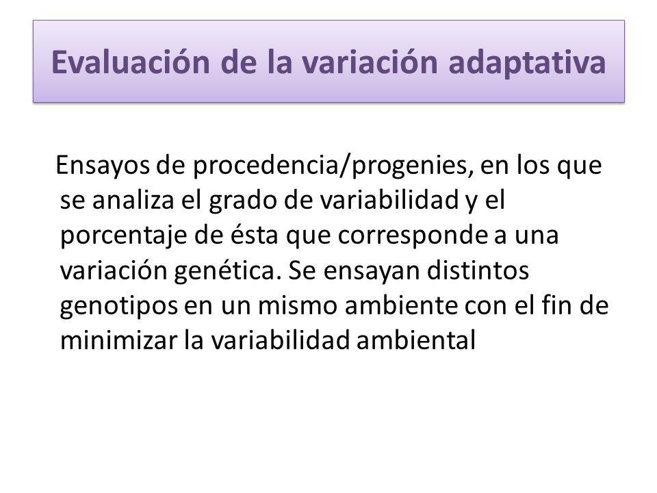 Evaluación de la variación adaptativa