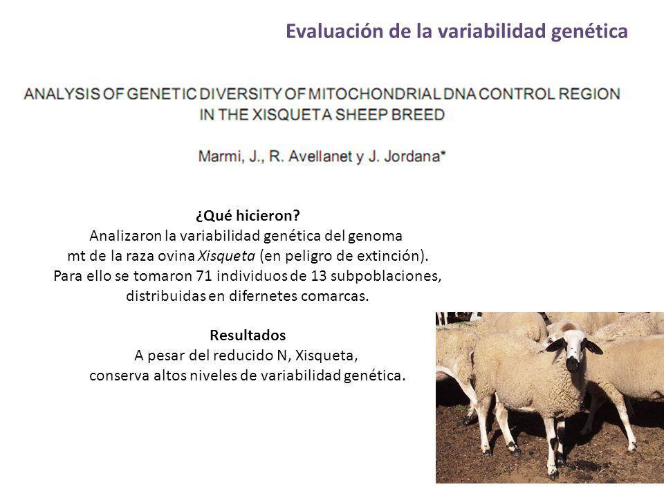 Evaluación de la variabilidad genética