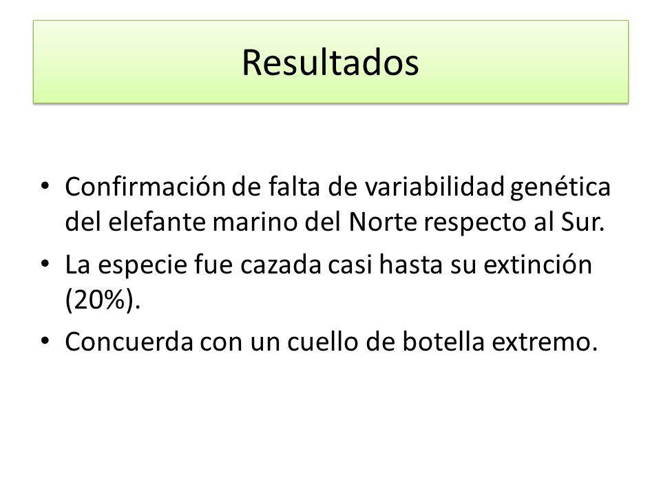 Resultados Confirmación de falta de variabilidad genética del elefante marino del Norte respecto al Sur.