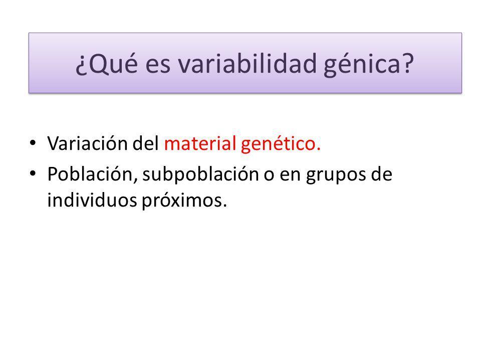 ¿Qué es variabilidad génica