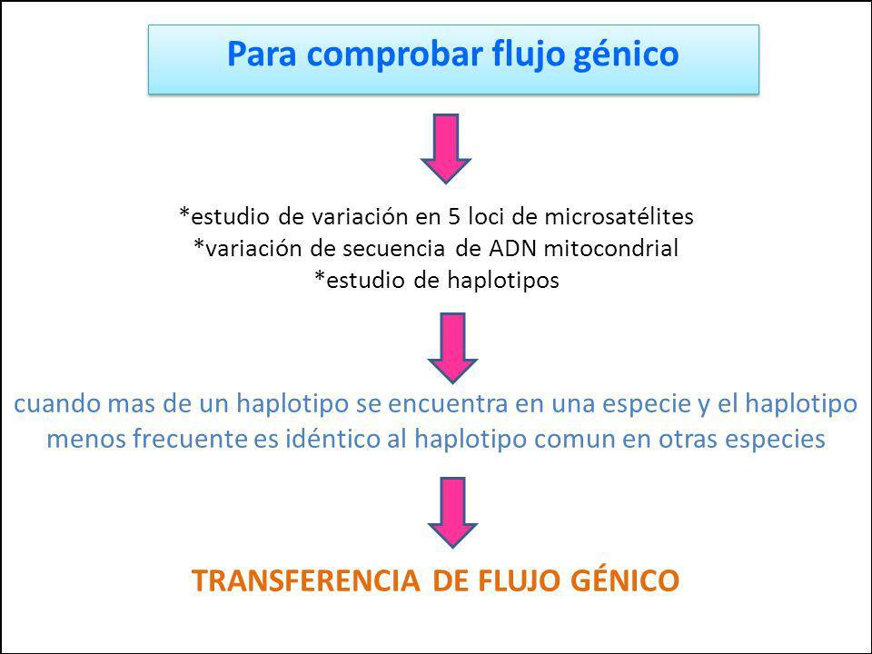 Para comprobar flujo génico