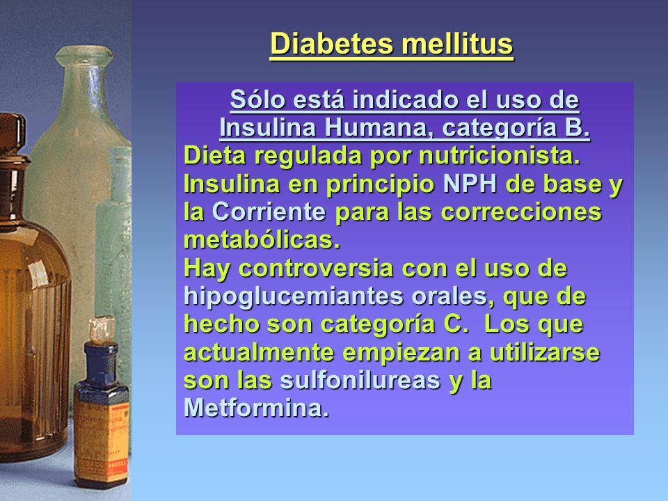 Sólo está indicado el uso de Insulina Humana, categoría B.