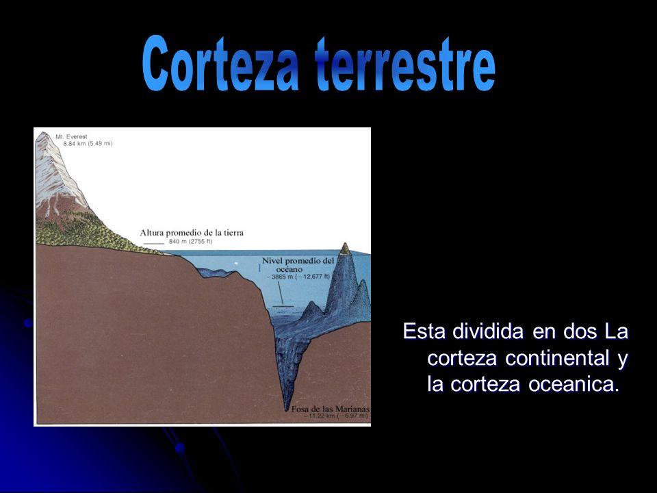 Corteza terrestre Esta dividida en dos La corteza continental y la corteza oceanica.