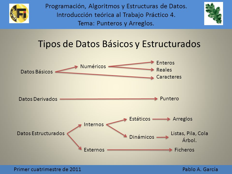 Tipos de Datos Básicos y Estructurados