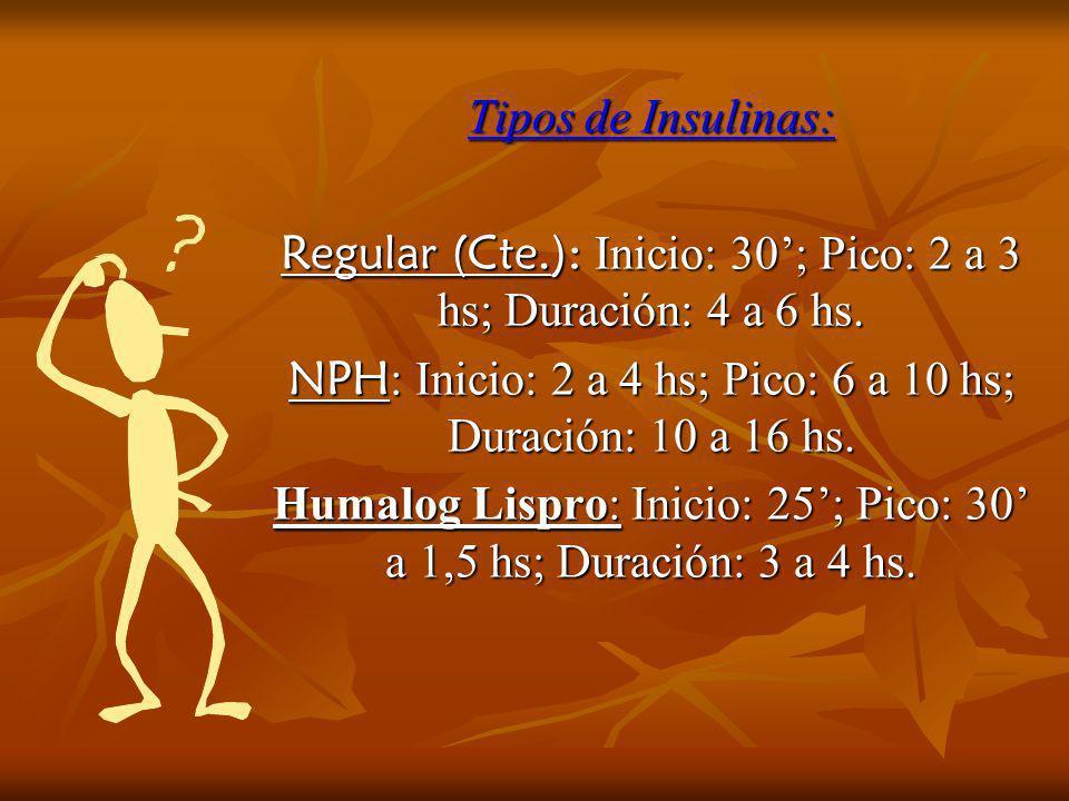 Regular (Cte.): Inicio: 30'; Pico: 2 a 3 hs; Duración: 4 a 6 hs.