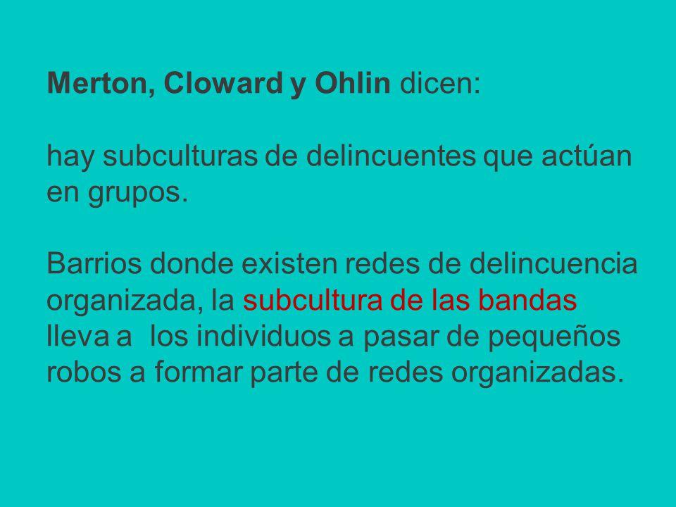 Merton, Cloward y Ohlin dicen: hay subculturas de delincuentes que actúan en grupos.