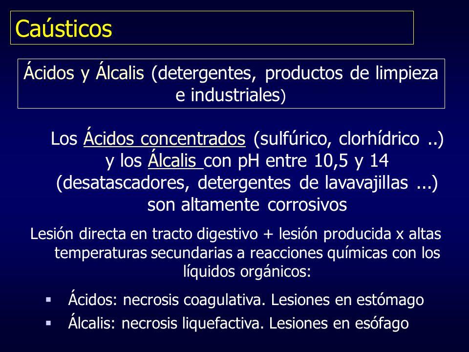 Ácidos y Álcalis (detergentes, productos de limpieza e industriales)