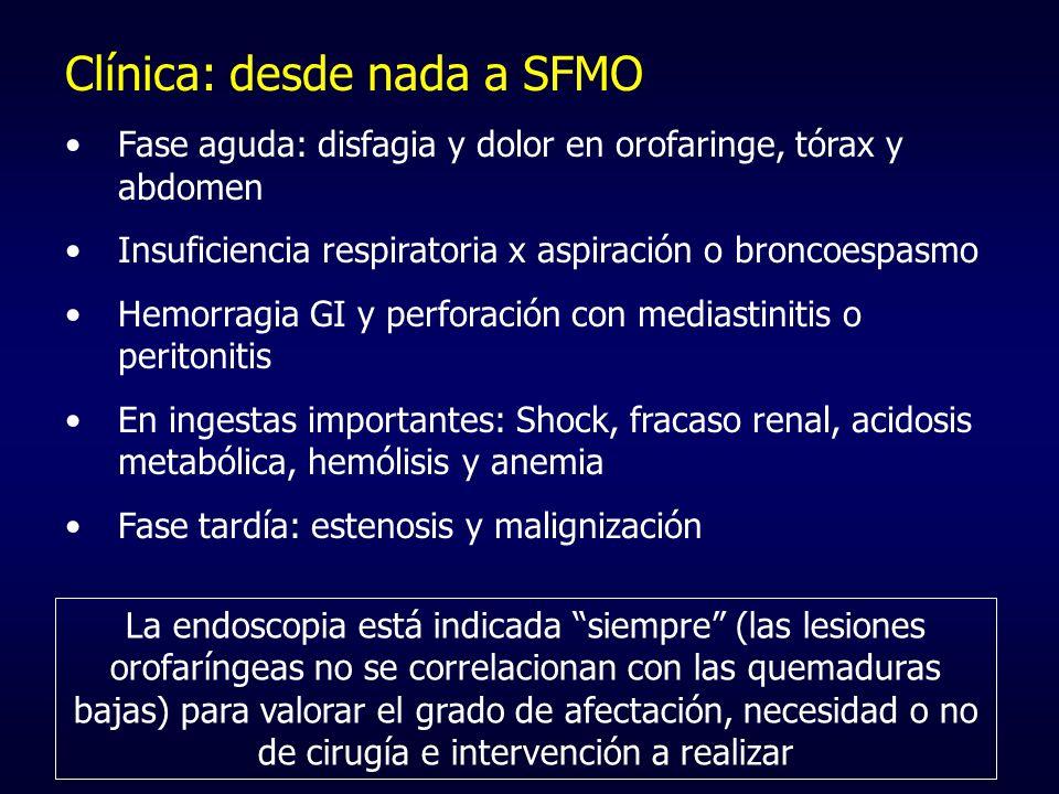 Clínica: desde nada a SFMO