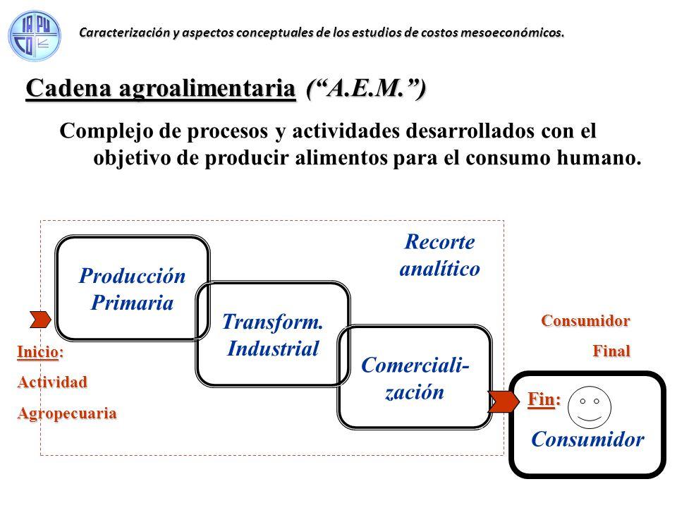 Cadena agroalimentaria ( A.E.M. )