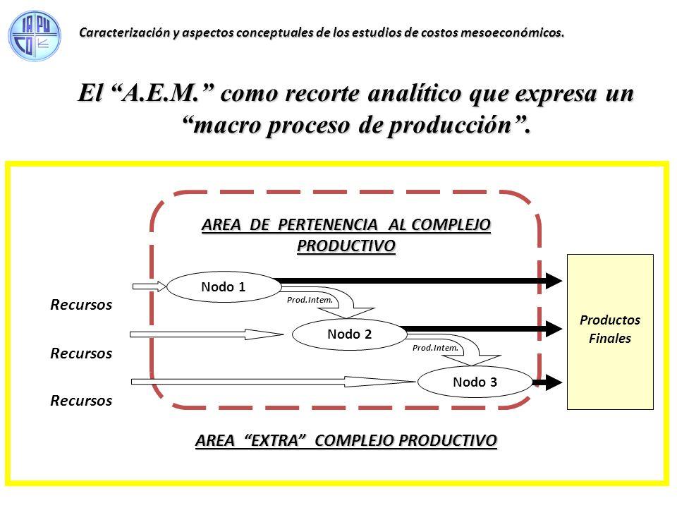 Caracterización y aspectos conceptuales de los estudios de costos mesoeconómicos.