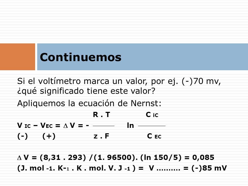 Continuemos Si el voltímetro marca un valor, por ej. (-)70 mv, ¿qué significado tiene este valor Apliquemos la ecuación de Nernst: