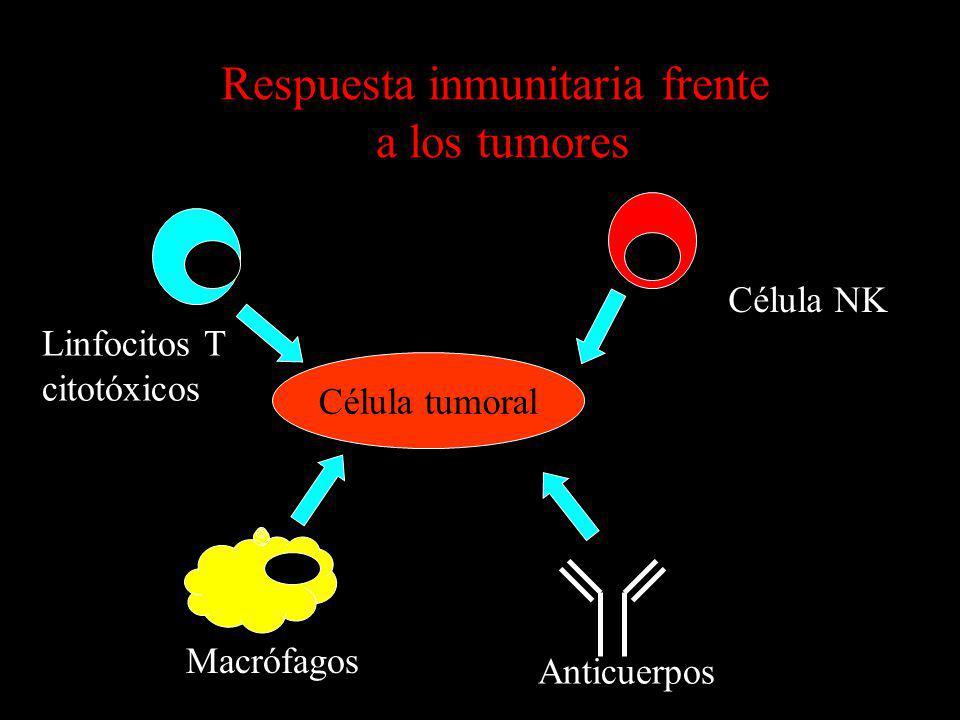 Respuesta inmunitaria frente