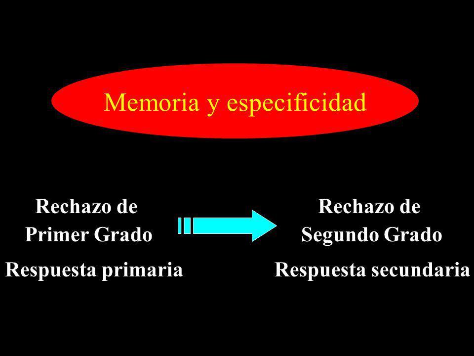 Memoria y especificidad