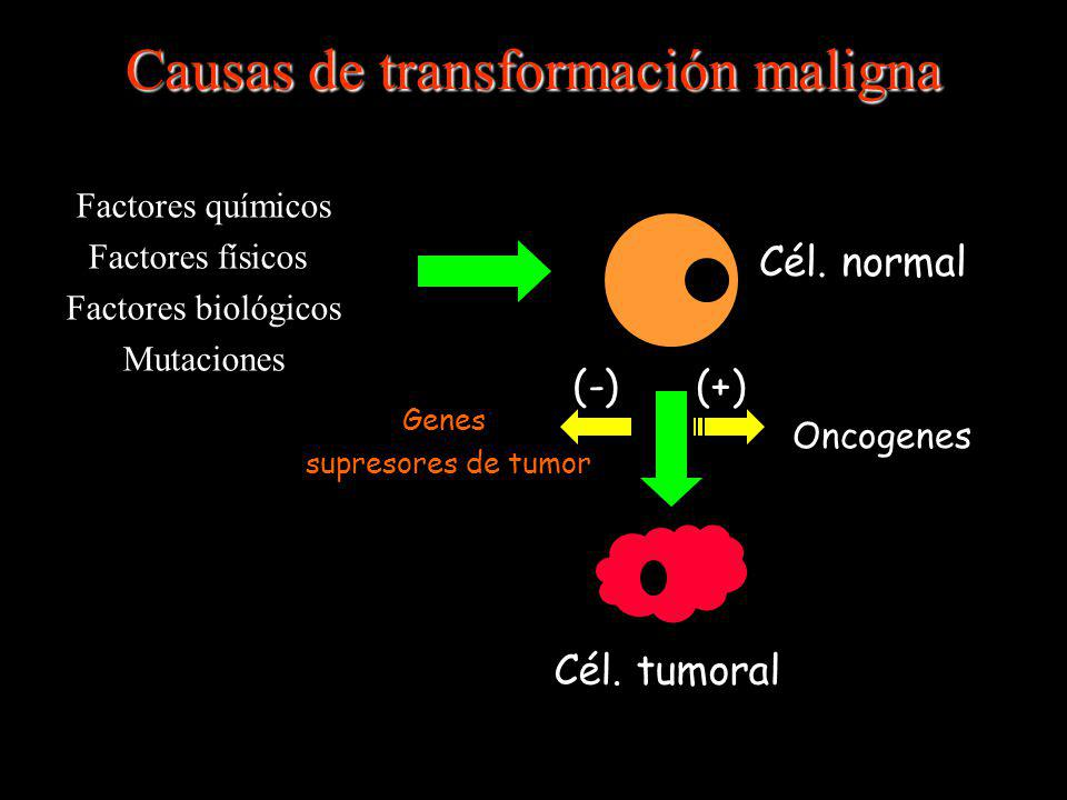 Causas de transformación maligna