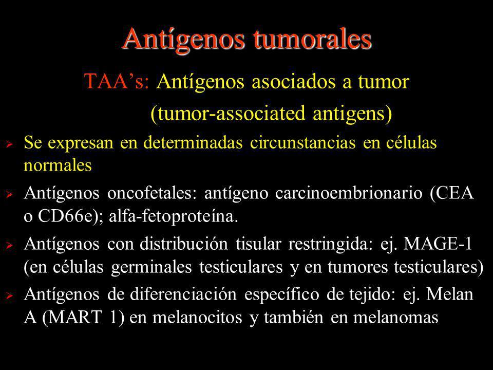 Antígenos tumorales TAA's: Antígenos asociados a tumor