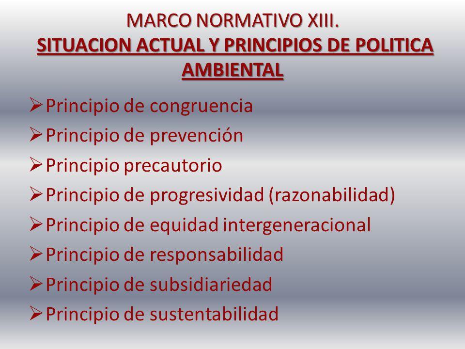 MARCO NORMATIVO XIII. SITUACION ACTUAL Y PRINCIPIOS DE POLITICA AMBIENTAL