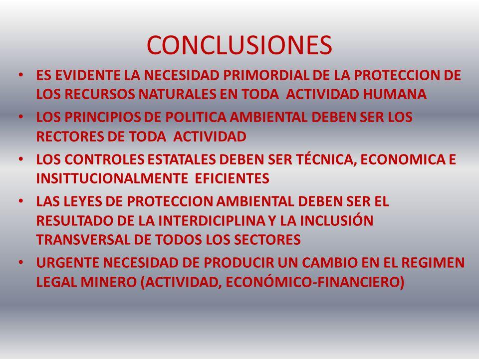 CONCLUSIONES ES EVIDENTE LA NECESIDAD PRIMORDIAL DE LA PROTECCION DE LOS RECURSOS NATURALES EN TODA ACTIVIDAD HUMANA.