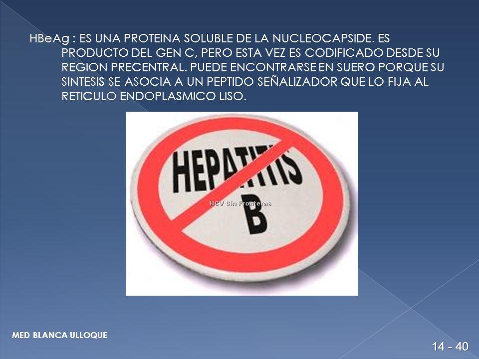 HBeAg : ES UNA PROTEINA SOLUBLE DE LA NUCLEOCAPSIDE