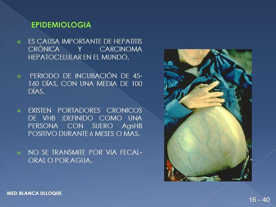 EPIDEMIOLOGIA ES CAUSA IMPORTANTE DE HEPATITIS CRÓNICA Y CARCINOMA HEPATOCELULAR EN EL MUNDO,