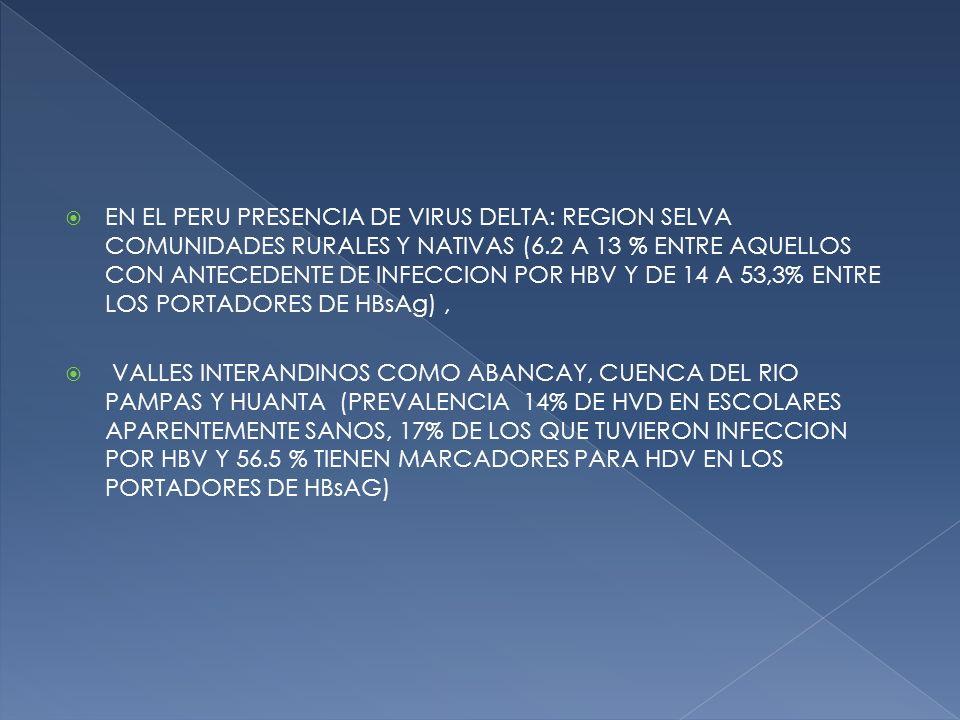 EN EL PERU PRESENCIA DE VIRUS DELTA: REGION SELVA COMUNIDADES RURALES Y NATIVAS (6.2 A 13 % ENTRE AQUELLOS CON ANTECEDENTE DE INFECCION POR HBV Y DE 14 A 53,3% ENTRE LOS PORTADORES DE HBsAg) ,