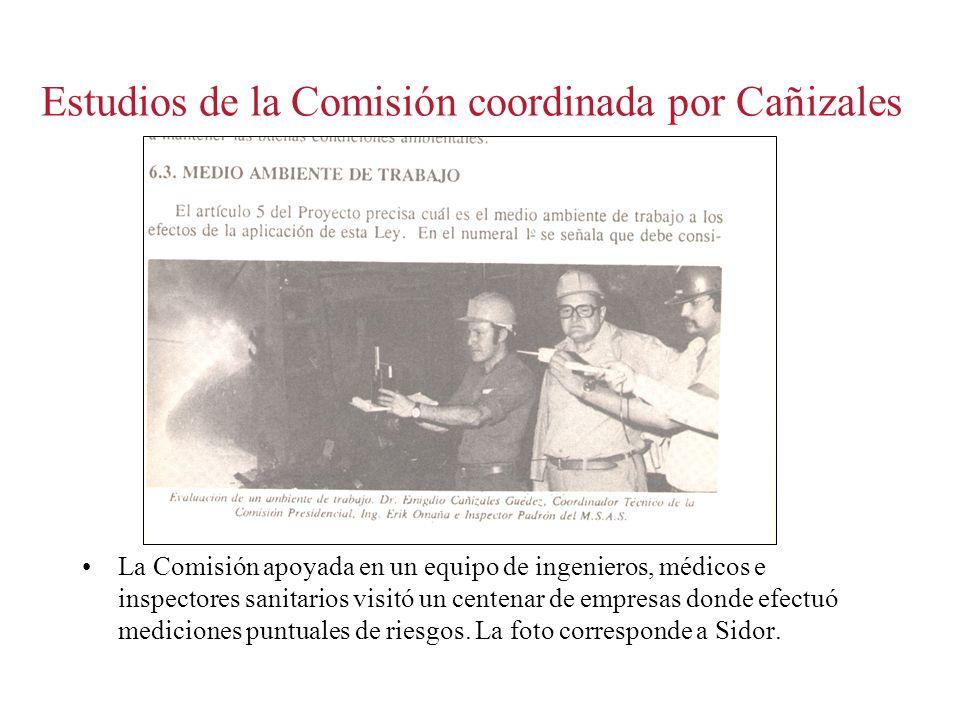 Estudios de la Comisión coordinada por Cañizales