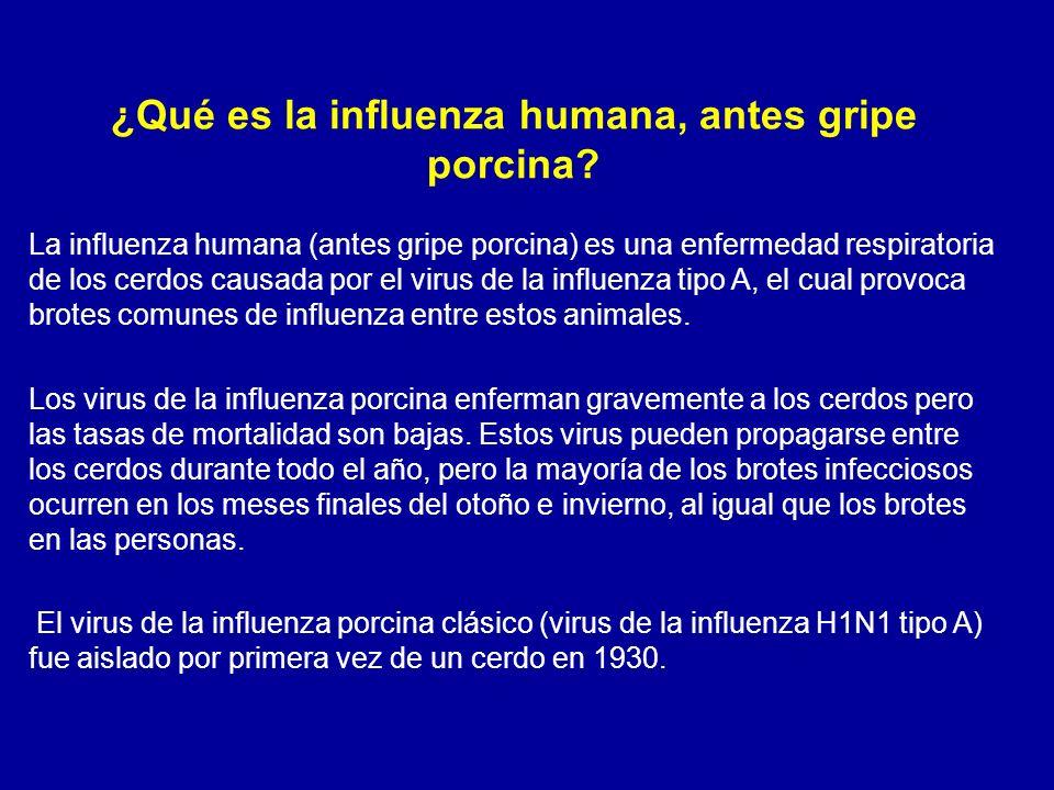 ¿Qué es la influenza humana, antes gripe porcina