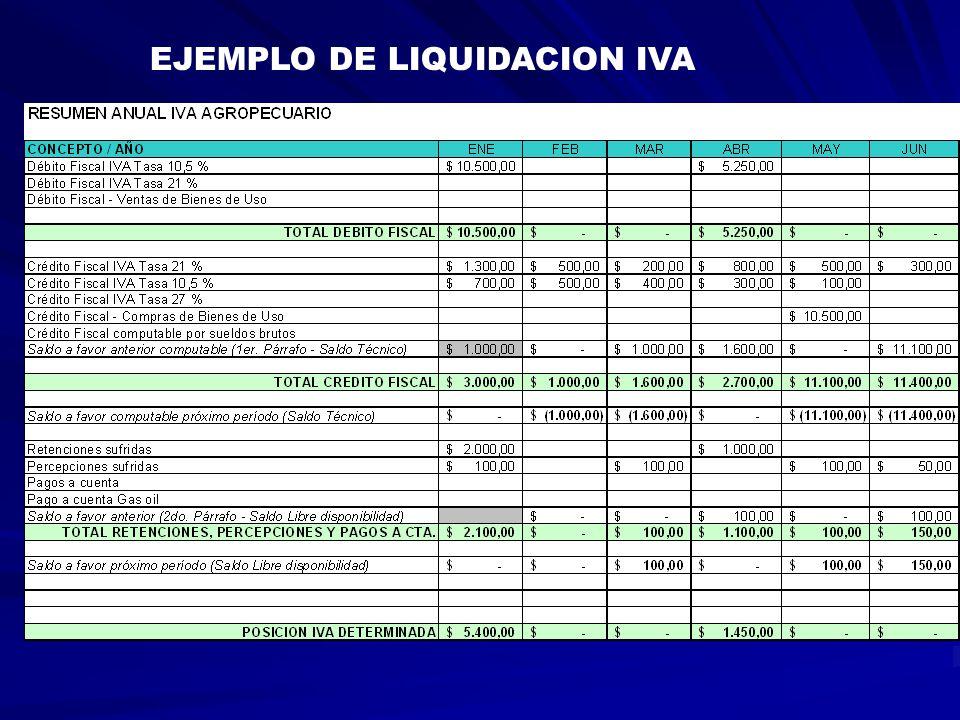 EJEMPLO DE LIQUIDACION IVA