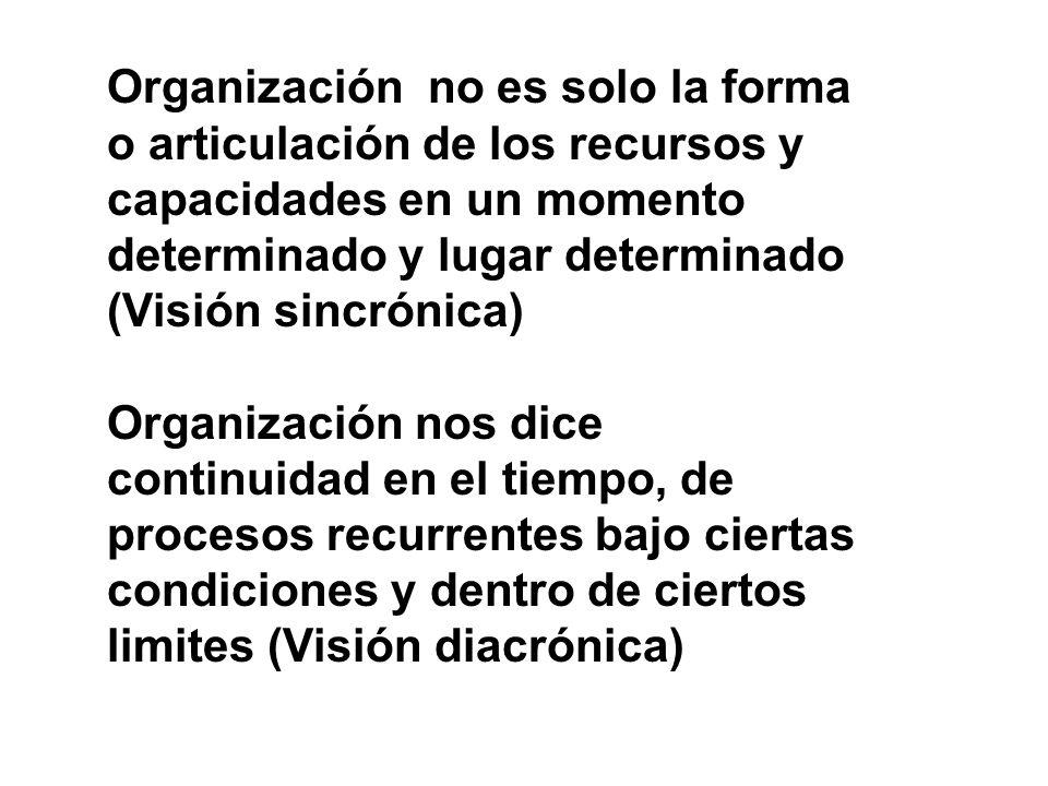 Organización no es solo la forma o articulación de los recursos y capacidades en un momento determinado y lugar determinado (Visión sincrónica)