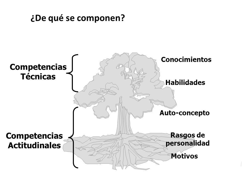 ¿De qué se componen Competencias Técnicas Competencias Actitudinales