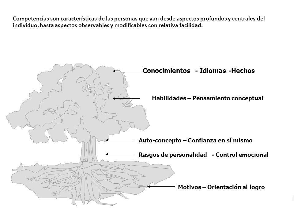 Conocimientos - Idiomas -Hechos