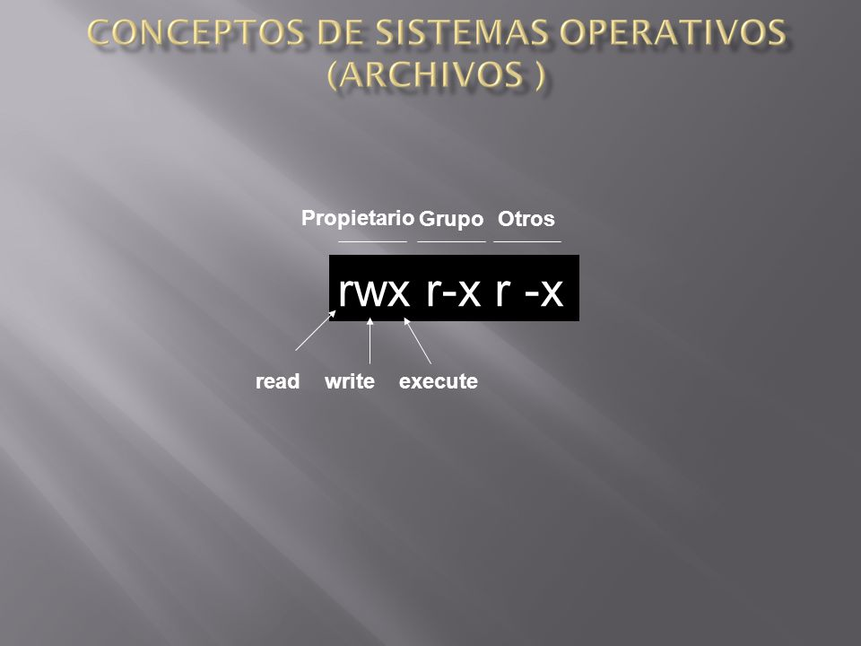 Propietario Grupo Otros rwx r-x r -x read write execute