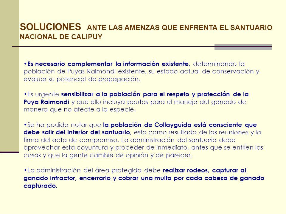 SOLUCIONES ANTE LAS AMENZAS QUE ENFRENTA EL SANTUARIO NACIONAL DE CALIPUY