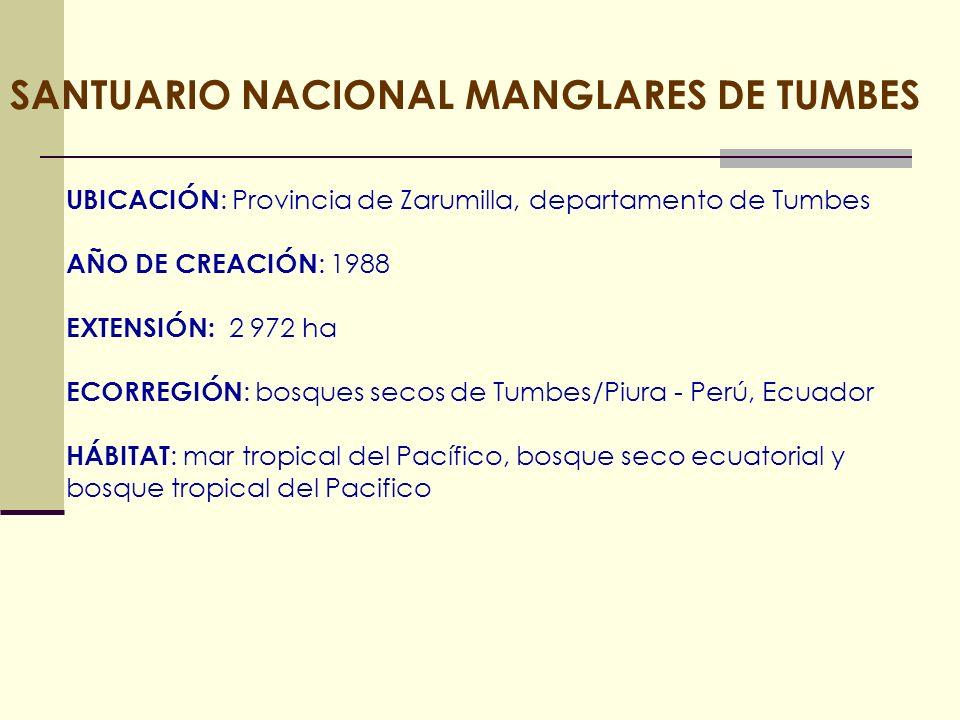 SANTUARIO NACIONAL MANGLARES DE TUMBES