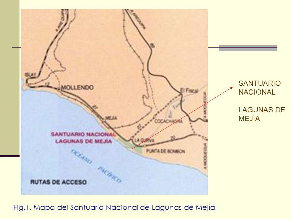 Fig.1. Mapa del Santuario Nacional de Lagunas de Mejía
