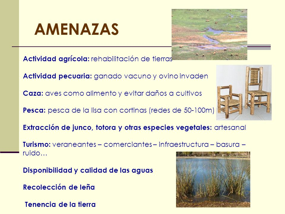 AMENAZAS Actividad agrícola: rehabilitación de tierras